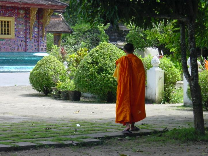 Zen Walking 586091
