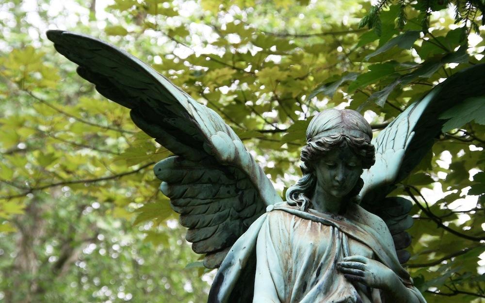 angel-why