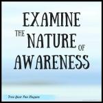 examine-nature-of-awareness