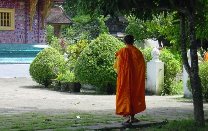 zen-walking